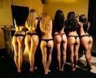 Girlfriends , 8 961 010-86-86 — экстрим секс, круглосуточно, без выходных